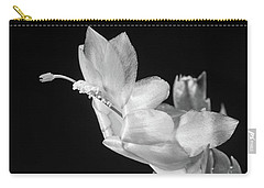Christmas Cactus On Black Carry-all Pouch by Ed Cilley