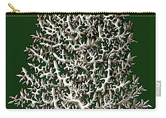 Carry-all Pouch featuring the photograph Christmas Coral Tree Earnst Hackel by Suzanne Powers