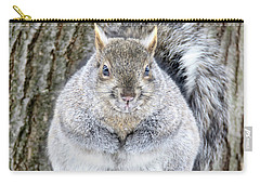 Chubby Squirrel Carry-all Pouch by Brook Burling