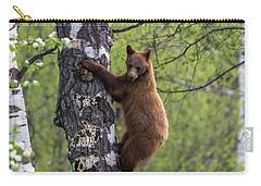 Cinnamon Climb Carry-all Pouch
