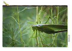 Carry-all Pouch featuring the photograph Cinq Pattes by Rasma Bertz