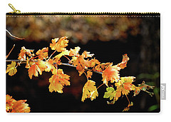 Classic Colors Carry-all Pouch