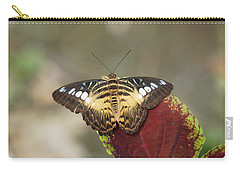 Carry-all Pouch featuring the photograph Clipper Butterfly by Paul Gulliver