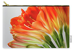 Clivia Miniata 2 Carry-all Pouch