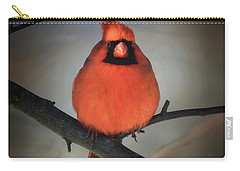 Carry-all Pouch featuring the photograph Close Encounter On A Blustery Day by Lois Bryan