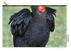 Close-up Of Ground Hornbill Bucorvidae Carry-all Pouch