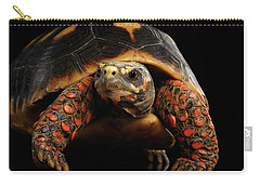 Close-up Of Red-footed Tortoises, Chelonoidis Carbonaria, Isolated Black Background Carry-all Pouch by Sergey Taran