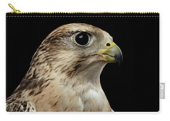 Close-up Saker Falcon, Falco Cherrug, Isolated On Black Background Carry-all Pouch