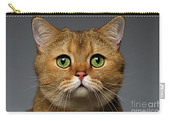 Closeup Golden British Cat With  Green Eyes On Gray Carry-all Pouch by Sergey Taran