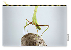 Closeup Green Praying Mantis On Stick Carry-all Pouch