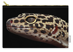 Closeup Head Of Leopard Gecko Eublepharis Macularius Isolated On Black Background Carry-all Pouch by Sergey Taran