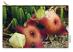 Closeup Of A Desert Starfish Carry-all Pouch