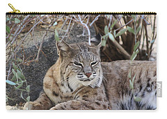 Closeup Of Bobcat Carry-all Pouch