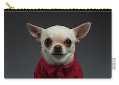 Closeup Portrait Chihuahua Dog In Stylish Clothes. Gray Background Carry-all Pouch