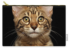 Closeup Portrait Of Bengal Kitty Isolated Black Background Carry-all Pouch by Sergey Taran