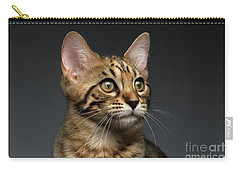 Closeup Portrait Of Bengal Male Kitty On Dark Background Carry-all Pouch by Sergey Taran
