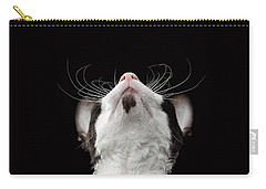 Closeup Portrait Of Cornish Rex Looking Up Isolated On Black  Carry-all Pouch by Sergey Taran