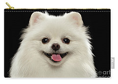 Closeup Portrait Of  White Spitz Dog On Black  Carry-all Pouch by Sergey Taran