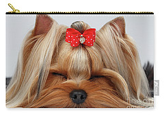 Closeup Yorkshire Terrier Dog With Closed Eyes Lying On White  Carry-all Pouch