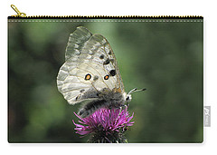 Clouded Apollo Butterfly Carry-all Pouch by Jacqi Elmslie
