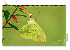Clouded Sulphur Butterfly Macro Carry-all Pouch by Kathy Baccari