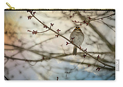 Carry-all Pouch featuring the photograph Cloudy Finch by Trish Tritz
