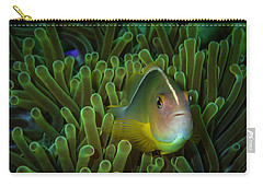 Clownfish Close Up Carry-all Pouch