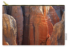 Coal Mine Hoodoos Carry-all Pouch