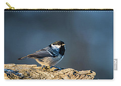 Carry-all Pouch featuring the photograph Coal Tit's Colors by Torbjorn Swenelius
