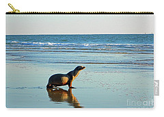 Carry-all Pouch featuring the photograph Coastal Friends by Everette McMahan jr
