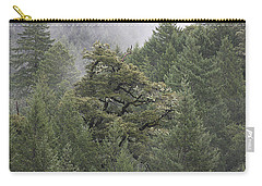 Coastal Mountain Landscape Carry-all Pouch