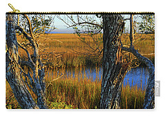 Carry-all Pouch featuring the photograph Coastal Winter Scene by Laura Ragland