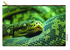 Coiled Calm Carry-all Pouch
