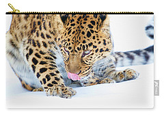 Cold Leopard In Snow Carry-all Pouch by Steve McKinzie