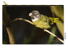 Collared Finch-bill Carry-all Pouch