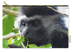 Colobus Monkey Eating Leaves In A Tree Close Up Carry-all Pouch