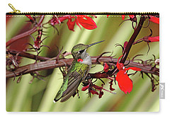 Color Coordinated Hummer Carry-all Pouch by Debbie Oppermann