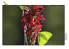 Carry-all Pouch featuring the photograph Color On Citico by Douglas Stucky