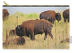 Colorado Buffalo  0093 Carry-all Pouch
