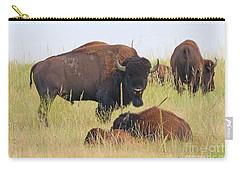 Colorado Buffalo 0096 Carry-all Pouch
