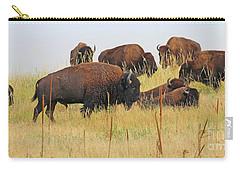 Colorado Buffalo  0099 Carry-all Pouch