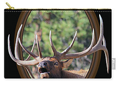 Carry-all Pouch featuring the photograph Colorado Bull Elk by Shane Bechler