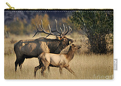 Colorado Elk  Carry-all Pouch