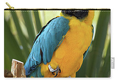 Colorful And Smart Carry-all Pouch
