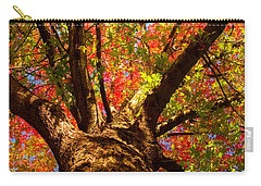 Colorful Autumn Abstract Carry-all Pouch