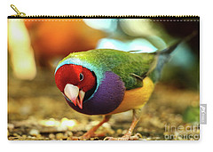 Colorful Bird Carry-all Pouch