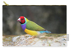 Carry-all Pouch featuring the photograph Colorful Lady Gulian Finch  by Penny Lisowski
