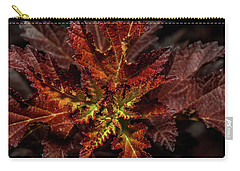 Carry-all Pouch featuring the photograph Colorful Leaves by Paul Freidlund