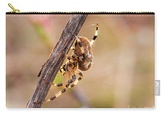 Colorful Spider Hanging From The Stick  Carry-all Pouch