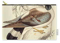 Columba Leuconota, Snow Pigeon Carry-all Pouch by Elizabeth Gould